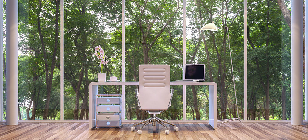 Office with natural light and greenery